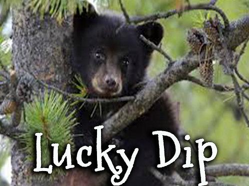 $5 Lucky Dip!