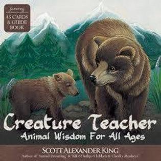 creature teacher oracle cards