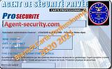 carte pro agent securite.PNG