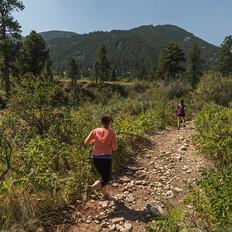 Trail pics.jpg