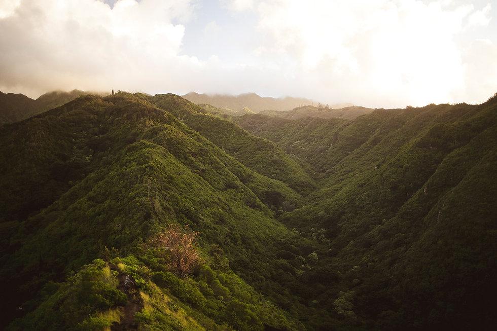 Environmental-marketing_hawaii_sustainab