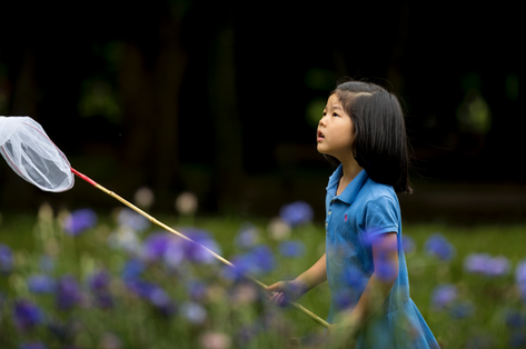 Girl trying to catch butterflies at the park in Tokyo, Japa