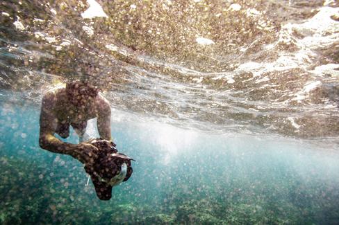 underwater-photography_underwater-photographer_ocean_hawaii_1.jpg