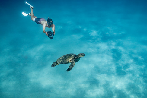 underwater-photography_underwater-photographer_ocean_hawaii_4.jpg
