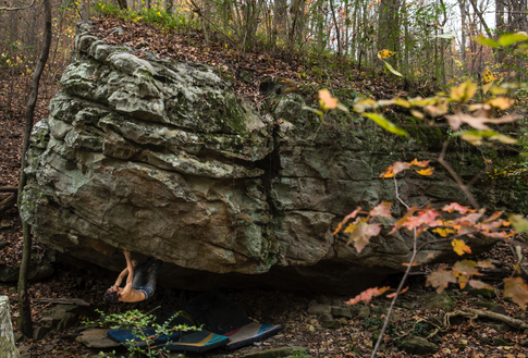 Niky Ceria climbing in Tennessee
