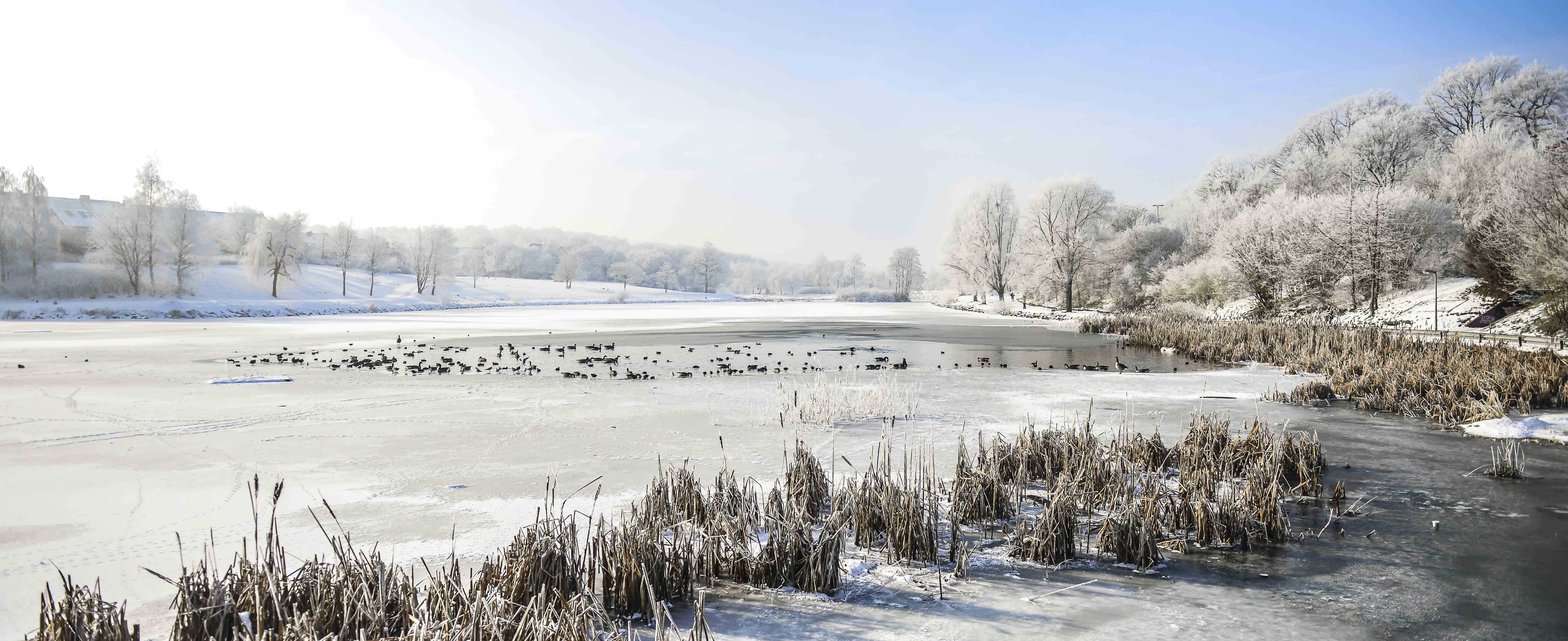 """Lac Louvain-la-Neuve """"2"""" - Belgique"""