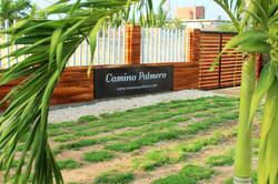 Bienvenidos_a_Camino_Palmero_Coveñas