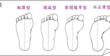 鞋具選擇簡介
