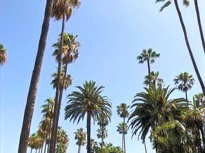 Los Angeles 101 Itinerary