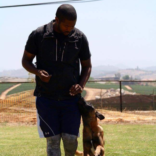 Dogs love training and I love training them!