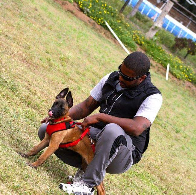 Trainer Ken and Puppy Malinois