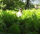 Jeremy in Ostrich Ferns