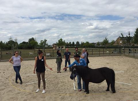 teamcoaching Gemeente Den Haag2.jpg
