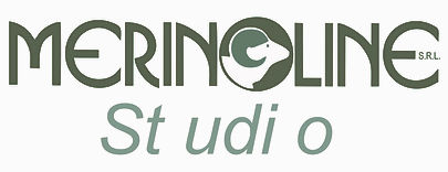 MERINOLINE STUDIO .jpg