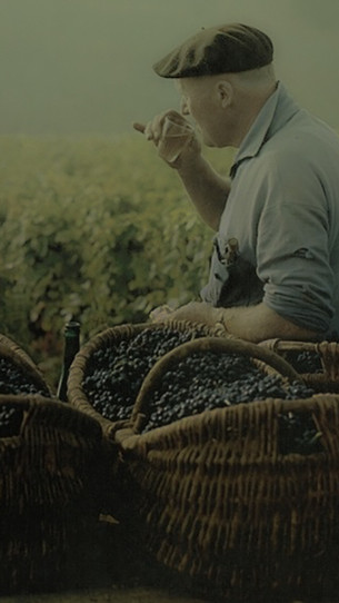 tuscany country peasant