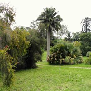 Botanical gardens of Villa Thuret in Antibes