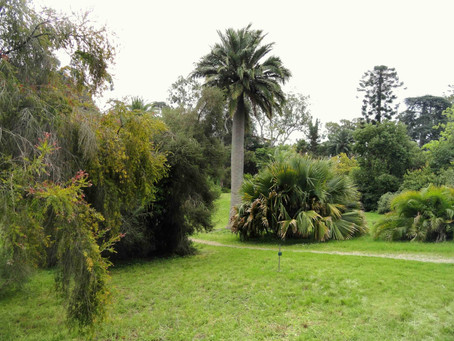 Botanical gardens of Villa Thuret in Antibes