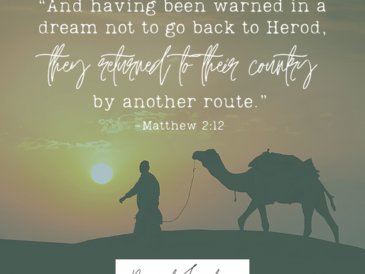 """Day 11: """"And having been warned in a dream not to go back to Herod, they returned..."""""""