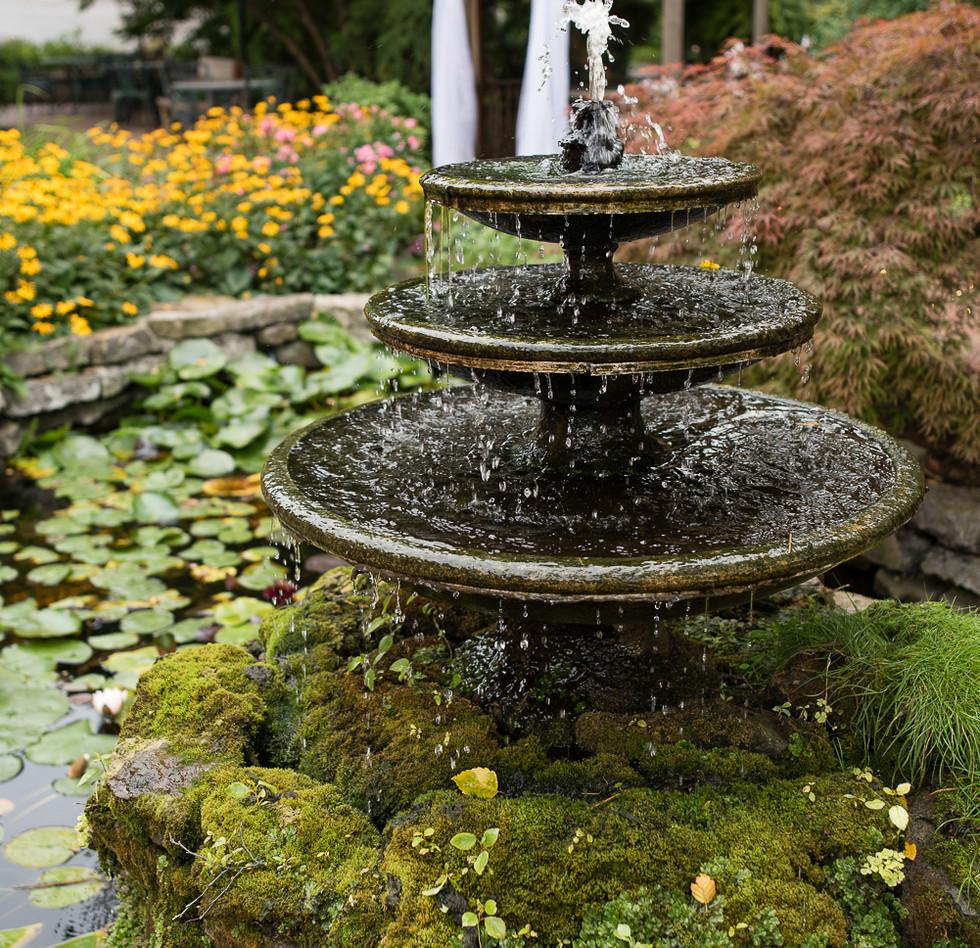 clifton-garden9.jpg