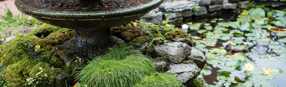 clifton-garden10.jpg