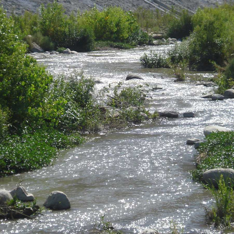 SANTA ANA RIVER RESTORATION