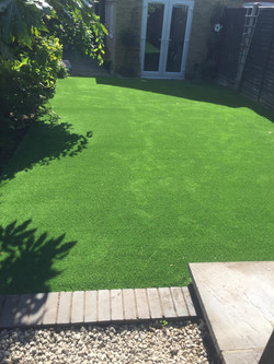replacement lawn