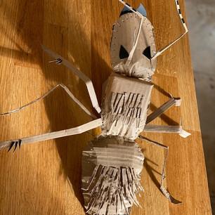 Elika's ant!