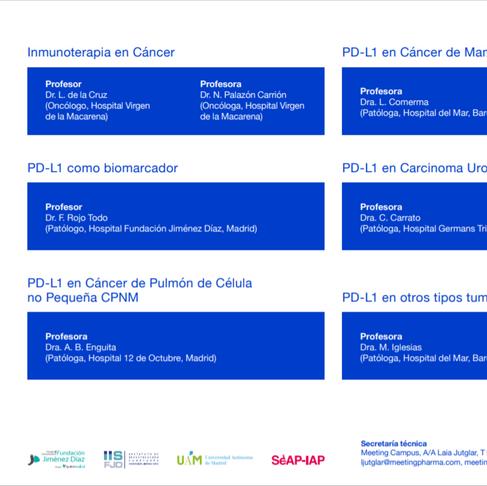 Curso online: PD-L1 como Biomarcador en Inmunoterapia en Tumores Sólidos
