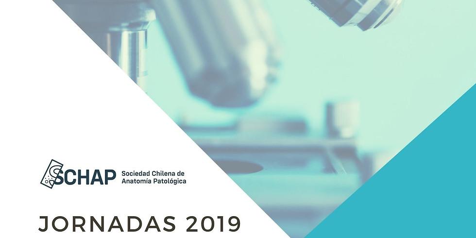 IV Jornada Educación Médica Continua Año 2019