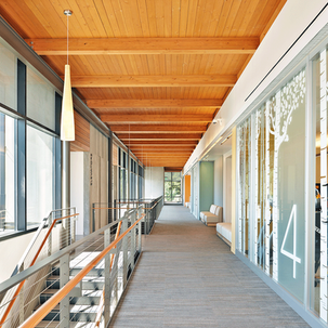 How does natural light promote patient healing in healthcare spaces?