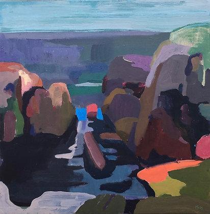 amongst the seaweed rocks
