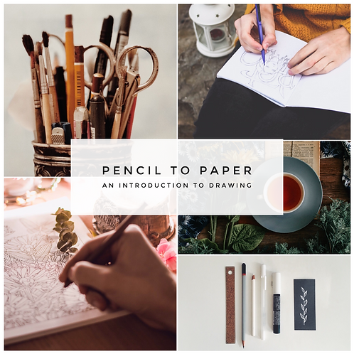 ★ Pencil to Paper: Introduction to Drawing: 2021 Date TBC