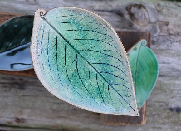 Nature Dish
