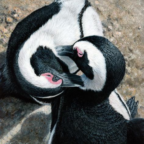 1244-preening-penguins-Birds-in-art.jpeg