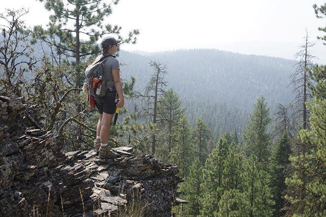 Atop an andesite outcrop within the Jump off Joe Mountain Quadrangle.