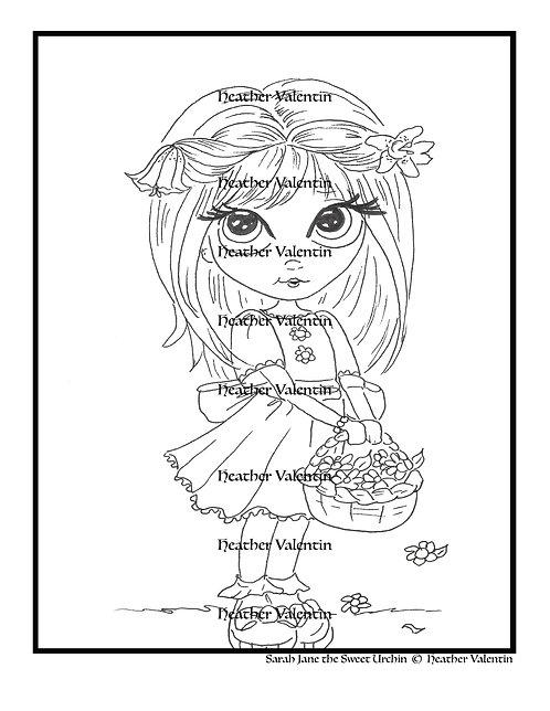 Sarah Jane the Sweet urchin