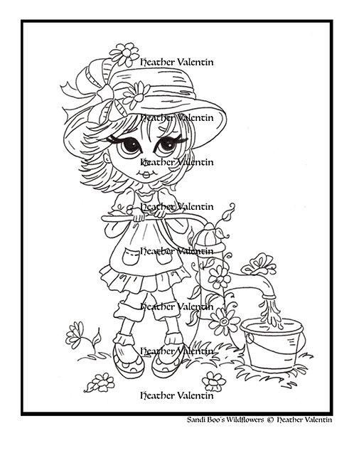 Sandi Boo's Wildflowers