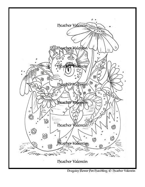 Dragaisy Flower Pot Hatchling