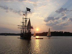 dove_and_sailboats_on_the_river_from_maureen_n