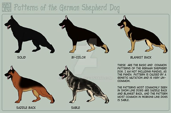 shepherd___patterns_by_mausergirl_dqnfp6