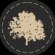 FFTT Circle Elemente 2020-09 Icon 3.1.pn