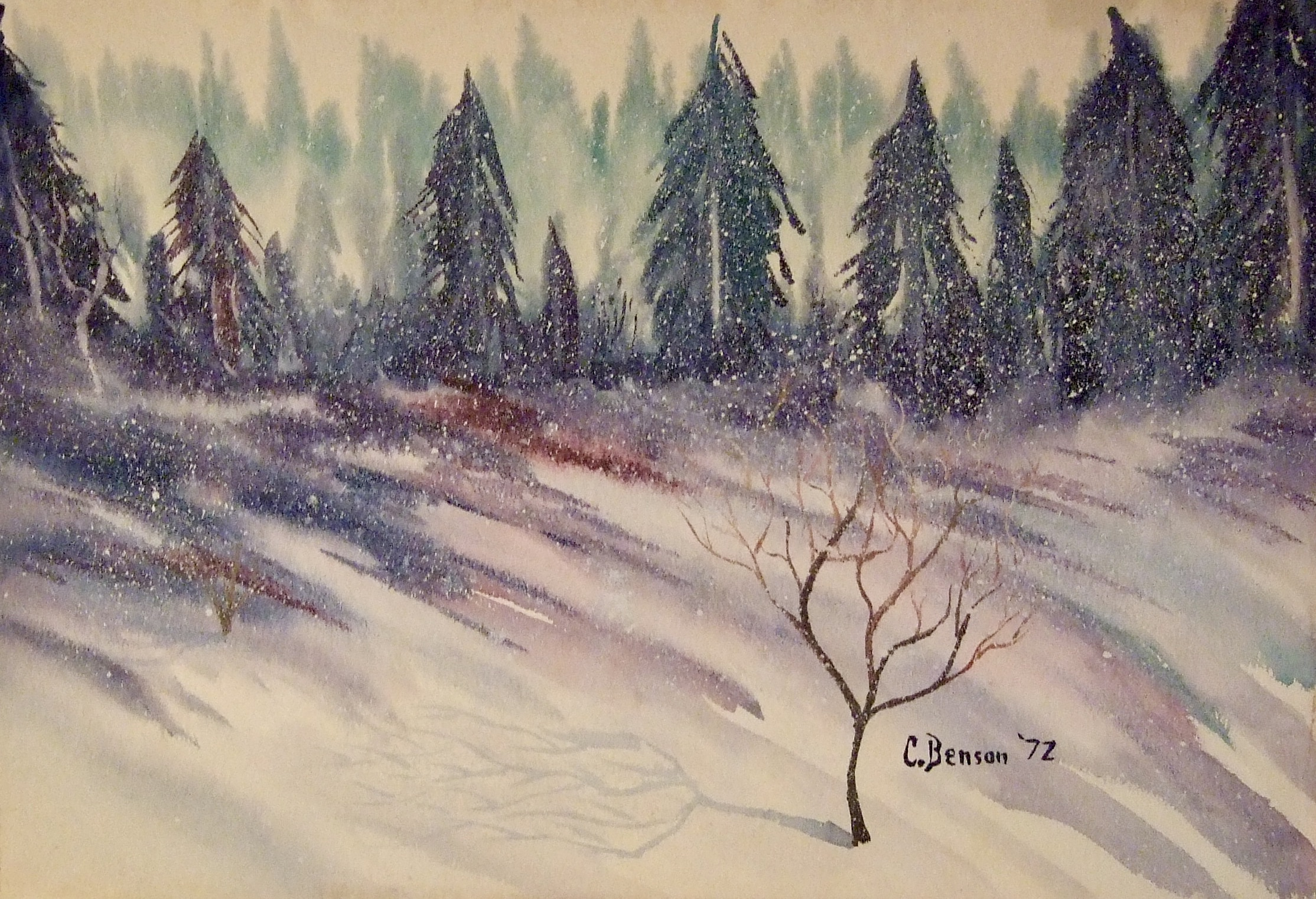 """""""SNOWSCAPE"""""""