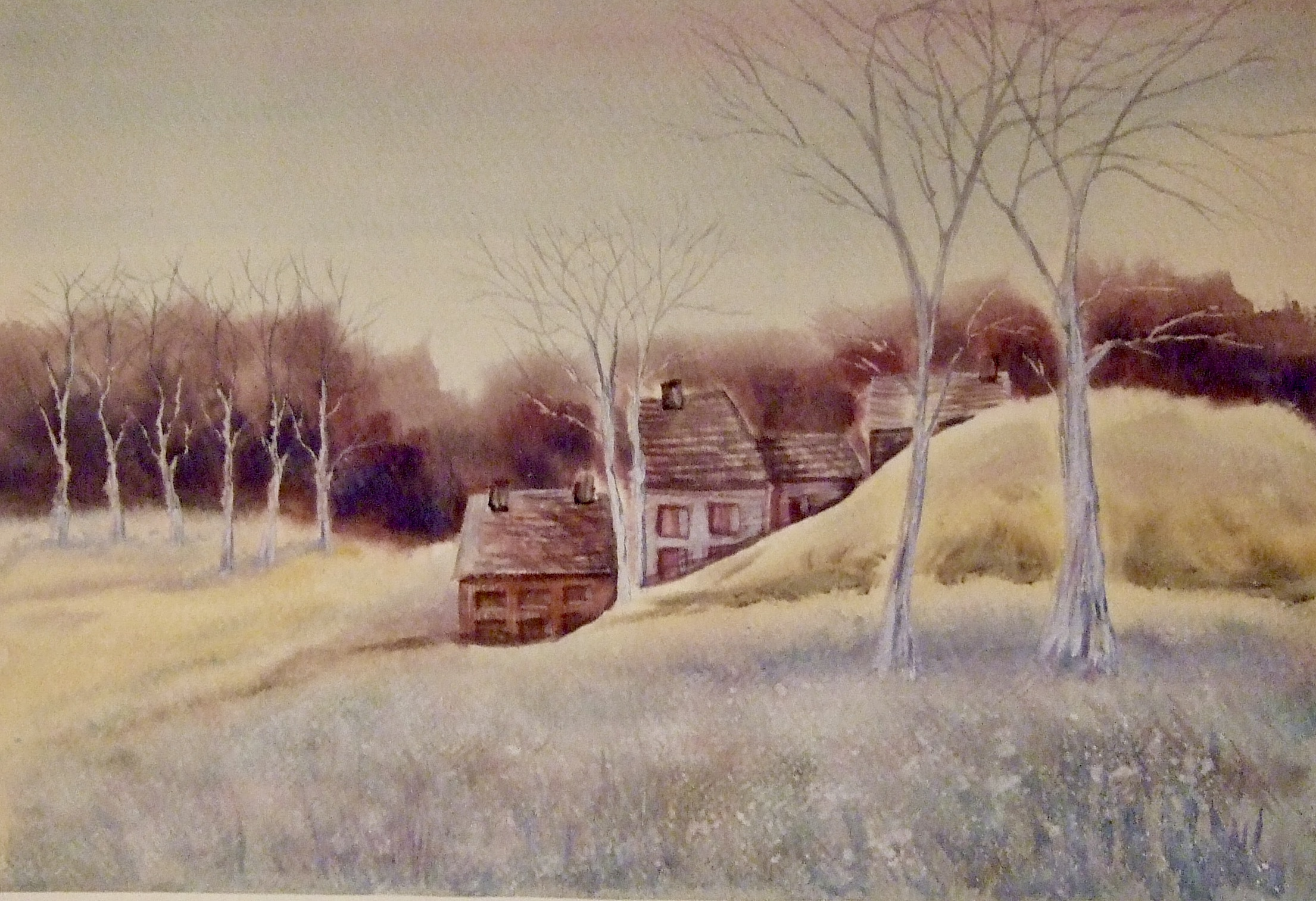 """WINTER COTTAGES"""