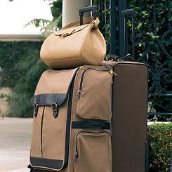 Brown Luggage_edited.jpg