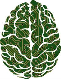 Roteirizador faz uso de algoritmos matemáticos