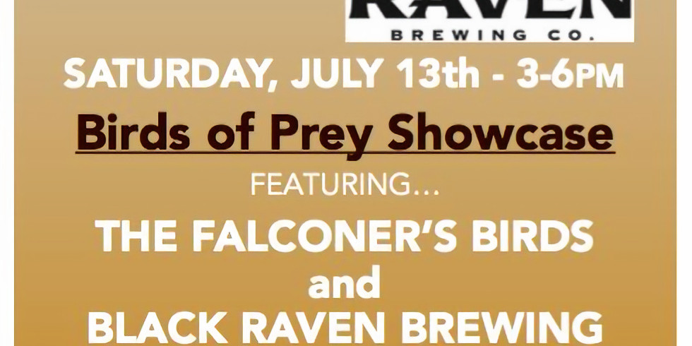 Birds of Prey Showcase with The Falconer & The Raven