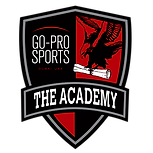 go-pro-sports-football-academy-dubai-mai