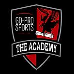 go-pro-sports-football-academy-dubai-mai