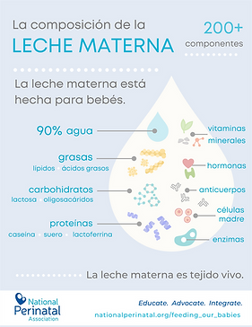 poster_Breastfeeding Awareness Month_Spanish.png