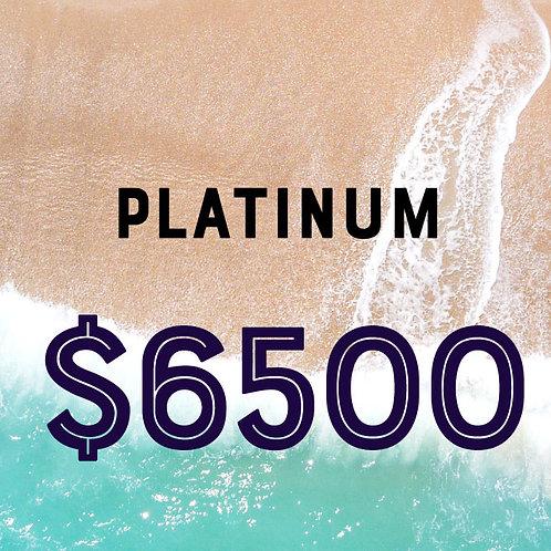 2020 Platinum Sponsor